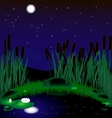 night lake vector image