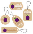 labels with various fruitsfor plum vector image vector image