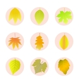 Set of icons autumn leaves vector image vector image