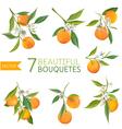 Vintage Oranges Flowers and Leaves Orange Bouquete vector image vector image