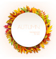 autumn round frame for your text decorated vector image vector image