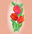 card design with tulips vector image vector image
