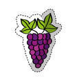 grapes fresh fruit drawing icon vector image vector image
