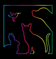 group of pets in the frame vector image vector image