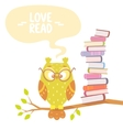 owl and books vector image vector image