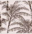 palm trees monochrome seamless pattern vector image