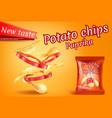 realistic potato chips paprika slices vector image