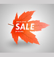 autumn sale up to 50 percent vector image vector image