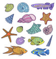 colorful shells and fishes vector image vector image