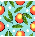 Seamless peach pattern with leaves vector image
