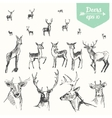 Set hand drawn deers vintage sketch vector image vector image