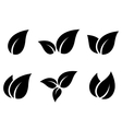 set of leaves icons vector image vector image