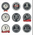 anniversary retro badge collection 30 years