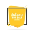 Autumn sale banner Origami style paper design vector image