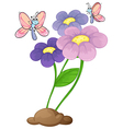 Blooming flowers with two butterflies vector image
