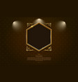 gold frame border octagon picture and pattern vector image vector image