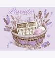 Lavender basket vector image
