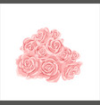 pink roses bouquet isolated on a white vector image