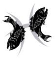 pisces zodiac horoscope astrology sign vector image