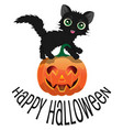 black cat and pumpkin for halloween vector image vector image