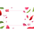 blurred rose petal leaves background 3d vector image vector image