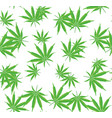 cannabis or marijuana seamless pattern with vector image