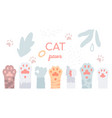 cat paws collection - flat design style vector image
