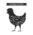 chicken cuts isolated on white vector image vector image