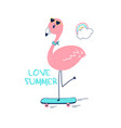 hand drawing flamingo vector image vector image
