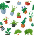 home plants in flowerpots potted flowery vector image vector image