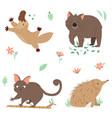 set australian animals platypus wombat echidna vector image