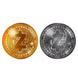 zcash gold and silver coins vector image vector image