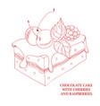 chocolate cake with cherries and raspberries vector image