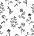 Seamless pattern with sketch flowers isolated vector image