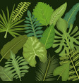 background color set decorative types green leaves vector image