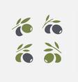 olive logo set black ripe and green branch vector image vector image