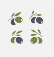 olive logo set black ripe and green olive branch vector image vector image