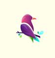abstract bird logo design template vector image vector image