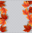 autumn leaves bright colourful autumn oak leaves vector image vector image