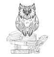 Bird owl on books vector image vector image