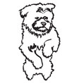 image of cute little doggie vector image