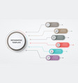 infographics circles 6 options or steps business vector image vector image