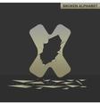 Letter X Broken mirror vector image