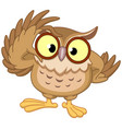 owl with glasses vector image