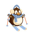 penguin in earmuffs and scarf on skis with sticks vector image vector image