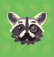 racoon emotional head of cute vector image vector image