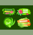 summer sale best choice tags discount emblem set vector image vector image