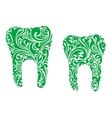 Teeth with floral and foliate patterns vector image