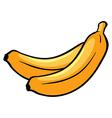 Two ripe bananas vector image vector image
