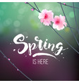 branch with blooming flowers vector image